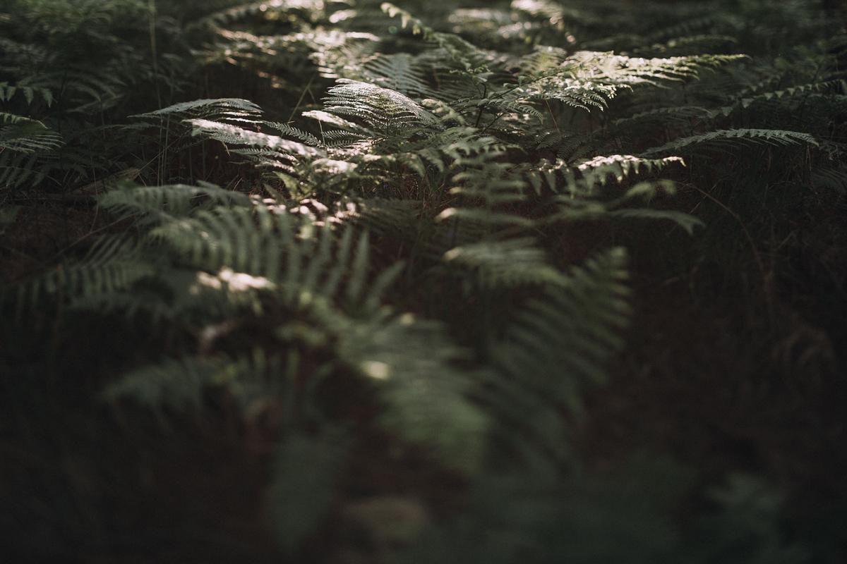 033-Liene-Petersone-Photography-