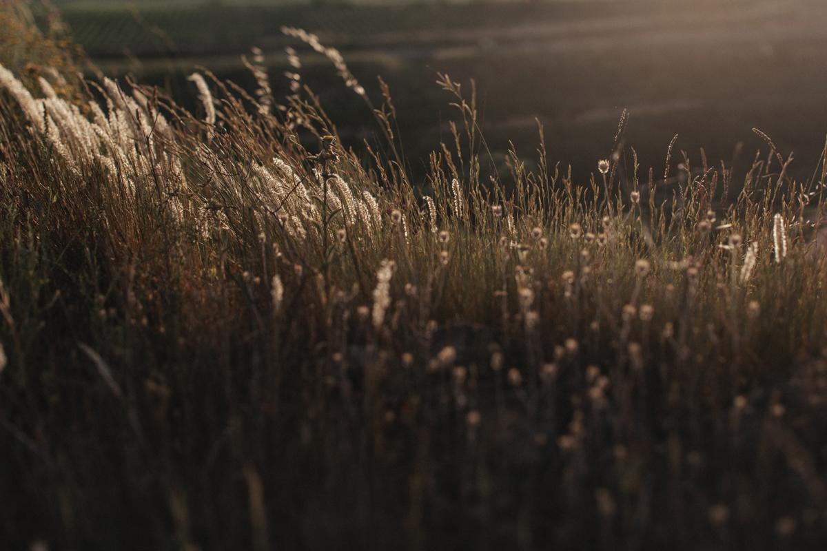 914-Petersone-Liene-photoshoot-blog